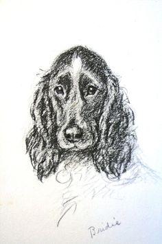 Lucy Dawson IRISH SETTER w Soleful Eyes Vintage Dog Print