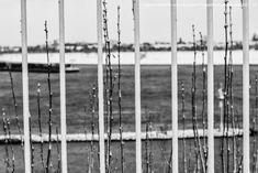 Image result for dusseldorf photography school Photography School, Utility Pole, Image