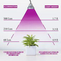 Plant Grow Light LED Bulb Desk Flexible Clip On Clamp Lamp 7W -- BuyinCoins.com