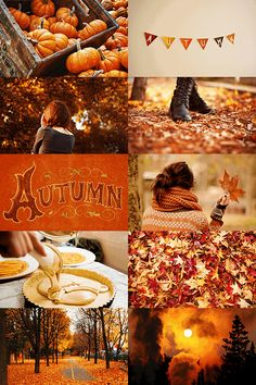 Ideas for a Cozy Fall: Autumn Recipes, Drinks, Decor & More Autumn Recipes! Get cozy with these Autumn Recipes, fall decor, fall drinks and more! Over 100 Autumn Recipes & fall inspiration Autumn Cozy, Autumn Fall, Autumn Feeling, Mabon, Samhain, Fall Drinks, Autumn Aesthetic, Happy Fall Y'all, Hello Autumn