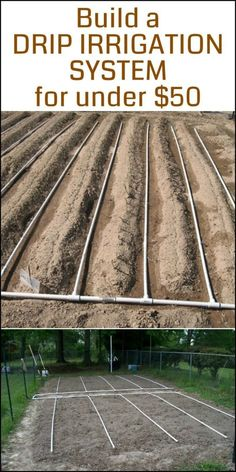 Need a drip irrigation system in your vegetable garden? Here's a project for you!