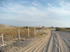 The road to Race Point Beach, Provincetown, MA by Karen Elliott