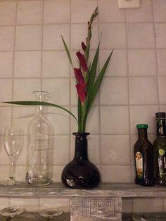 Gladiolen Stilllenen