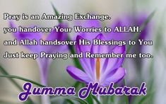 Beautiful Jumma Mubarak Wishes Messages - SMS - Quotes Jumma Mubarak Hadees, Jumma Mubarak Shayari, Jumma Mubarak Messages, Jumah Mubarak, Jumma Mubarak Quotes, Jumma Mubarak Images, Friday Messages, Friday Wishes, Blessed Friday