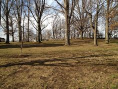 Oak Grove--the plaque is there, in the middle. Lee pitched a tent here.