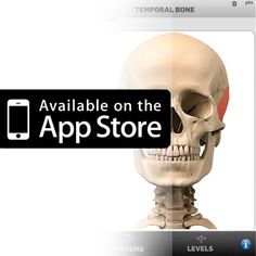 The Anatomy Game Anatomicus is available for Iphone...    #anatomygame #anatomicus #anatomy