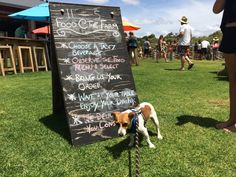 The Beer Farm Margaret River Dog Friends, Brewery, Good Times, River, Dogs, Pet Dogs, Doggies, Rivers