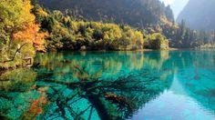 Viajes: Los lagos que te gustaría ver mañana al despertarte (y está Covadonga). Noticias de Estilo. No pueden ser más poéticos ni más bellos. Hay una laguna rosa, como la pantera, un lago de cinco flores, otro que crece entre dunas y más de uno que cambia de color. Lo que viene ahora es un suspiro. ¡Ay!