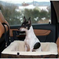 Pet Gear's Travel System offers your favorite pet the ability to stay comfortable and secure without impairing driving abilities.