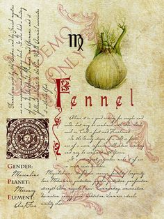 BOS ~ Fennel page inspired by the book in Practical Magic