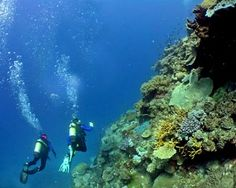 Scuba Diving Croatia - Seatech Marine Products / Daily Watermakers