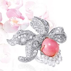 annahu_hautejoaillerieObsessed with Conch Pearls. A stunning 13.95 carats in our Enchanted Orchid Ring.