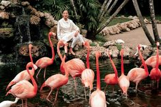 Michele Oka Doner by Bruce Weber (Force Nature - Vogue Italia June 2013) #vogue #photoshoot #fashion #flamingo #pink #nature // May