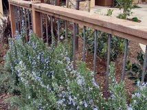 Inexpensive rebar and wood fencing. Link to 9 Imaginative Ideas for Industrial Rebar in the Garden.