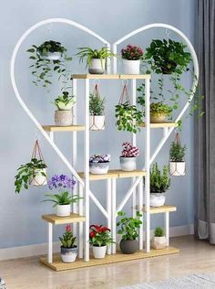 Cheap Flower Stand Plant Shelves Multi layer Plant Stand Flower Pot Rack Stand Home Indoor Flower Bonsai Display Shelf Indoor Balcony, Living Room Partition, Balcony Flowers, Decoration Plante, House Plants Decor, Flower Stands, Plant Shelves, Wall And Floor Tiles, Shelf Design