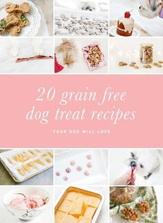 20 Grain Free Dog Treat Recipes that your dog will love! These homemade dog treats are healthy, yummy and super easy to make. Grab the free recipes here.