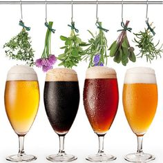 Herb Beers With Herbs Hanging