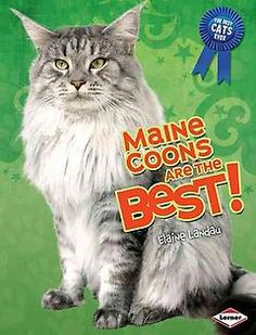 Maine Coons Are the Best! yes!! Their are cute and pretty cats!! :)