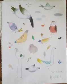 Winter birds.