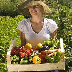 10 Easy Vegetables to Grow in Your Garden