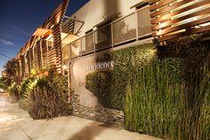 #Providence #BestRestaurant #Michelin #LosAngeles #Gastronomia #Guide #Guia #mejoresRestaurantes #USA https://revistavivelatinoamerica.com/2017/04/24/providence-restaurant-los-angeles-u-s-a/