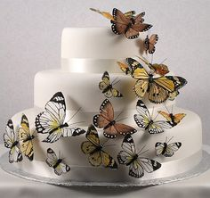 Beautiful Butterfly Cake Decorating Set - 24 pcs - Butterfly Wedding Favors - Wedding Favor Themes - Wedding Favors & Party Supplies - Favors and Flowers Wedding Cake Display, Wedding Cake Decorations, Wedding Cakes, Wedding Favors, Pretty Cakes, Beautiful Cakes, Amazing Cakes, Simply Beautiful, Butterfly Wedding Theme