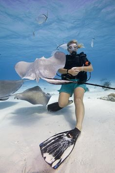 Jupiter has some of the clearest water and best drift scuba around.