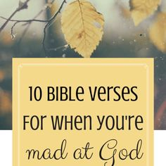 I came to the church as an adult, and part of my journey as a Christian has been to memorize Bible verses. I have hidden your word in my heart that I might not sin against you.-Psalm 119:11 Hiding God's Word in my heart is not only a Biblical concept, it is a great comfort to me. When things happ