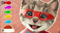 Learn With The Cutest Cat! Little Kitten Primary School - Educational Games Childre - Meow Moe Little Kittens, Little Pets, Kittens Cutest, Cute Cats, Friend Costumes, Game Costumes, Party Cartoon, Cartoon Kids, Funny Games For Kids