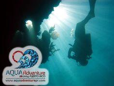 Aqua Adventure  Web: www.360DiveCenter... Facebook: www.facebook.com/... Twitter: @360divecenter g+: TrescientosSesenta Dive Center Mail: contacto@360divec... Skype: 360Dive Center