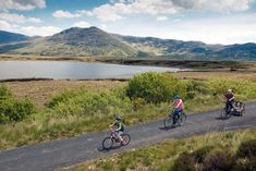 7 beautiful spots in Ireland to discover by bike (even if you don't own one) Dublin Zoo, Dublin City, Wexford Ireland, Adventure Resort, Ireland With Kids, Great Western, Forest Park, Bike Trails, Ireland Travel