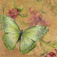 Butterfly Inspirations-A Digital Art by Jean Plout - Butterfly Inspirations-A Fine Art Prints and Posters for Sale Green Butterfly, Vintage Butterfly, Butterfly Cards, Butterfly Print, Stencil, Canvas Art, Canvas Prints, Images Vintage, Butterfly Pictures