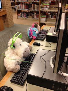 Darien Library to hold stuffed animal sleepover   Darien Times