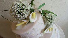 Allium u . Callas