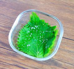 保存ができてそのまま使える!「大葉の塩漬け」が便利です   くらしのアンテナ   レシピブログ