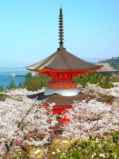 Itsukushima Shrine, Miyajima, Hiroshima, Japan, World Heritage, 厳島神社, 宮島, 広島, 日本, 世界遺産 #sakura #cherryblossom 桜