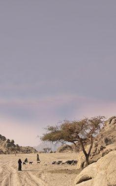 Sinai Desert - Egypt