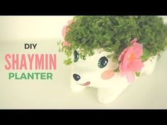 DIY: Hedgehog Planter | Shaymin inspired Pokemon DIY Home Decor - YouTube