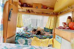 Campingvognen er et populært legehus for Louise Trillingsgaards børn. Her det datteren Mejse på fire år og familiens kat, der tumler.
