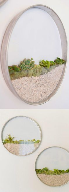 Love these Circular Framed Planters perfect for living artwork don't you think? #homedecoraccessories