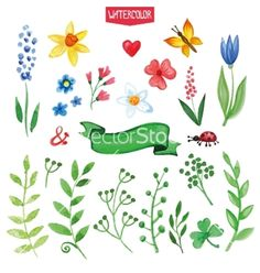 Watercolor flowers green branches set summer vector - by Tatiana_Kost on VectorStock®