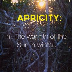 Apricity - the warmth of the sun in winter - Cool words - The Words, Fancy Words, Weird Words, Words To Use, Great Words, Awesome Words, Latin Words, Unusual Words, Unique Words