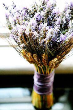 Flores silvestres...