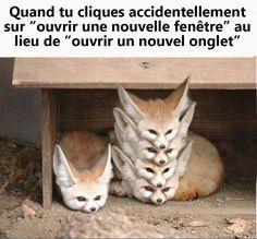 Ma phobie ! http://www.15heures.com/photos/jeAoB #LOL