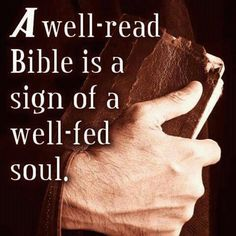 Image result for quote about reading the bible