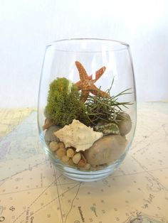Take me to the Shore. Modern Glass Vessel Beach Inspired Natural Terrarium, Contains Moss and Air Plant Terrarium from FaerieNest on Etsy.