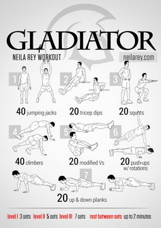 Gladiator Workout.........Gladiators were fierce people. To survive they required good core stability and strength followed by excellent ballistic movement capability. If you're ready to leap into the arena then this workout is a good way to prepare.   What it works: Shoulders, calves, triceps, quads, lower abs, lateral abs, core.