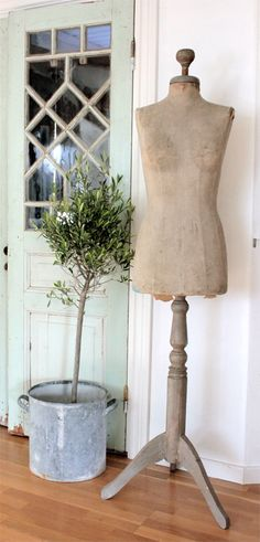 dress form decor...both the galvanized bucket and a great selection of dress forms available at American Home & Garden in Ventura, CA