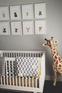 Adorable Gender Neutral Nursery With Gray Walls Adorned Sharon Montrose The Animal Print Art Features A Modern White Crib Layered
