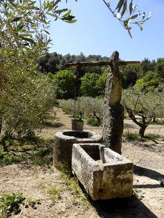 manon 21: La Provence comme au temps de Pagnol